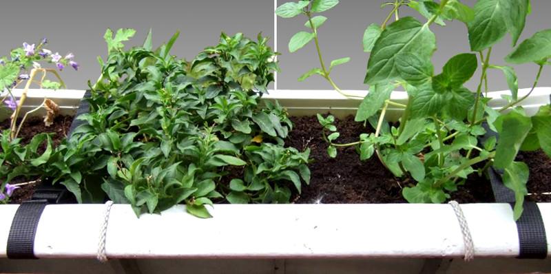 Balkonpflanzenaufhängung.
